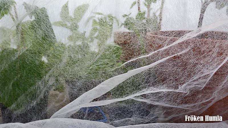 fiberdukstält,växthus