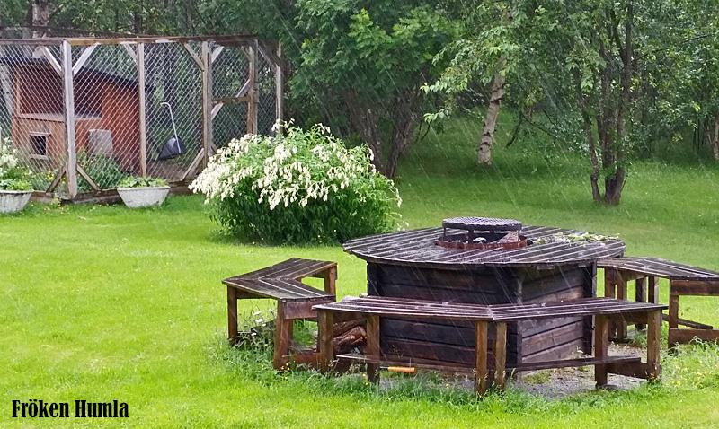 ösregn,juni,norrbotten