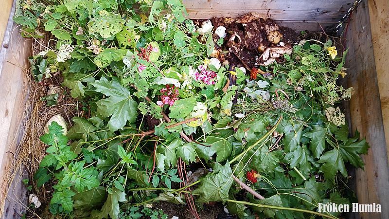 kompost,fröken humla,odling
