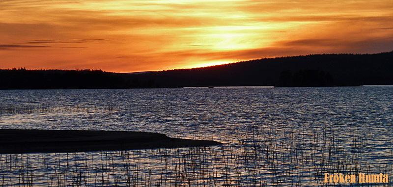 solnedgång,kanot,norrbotten,sommar,fröken humla