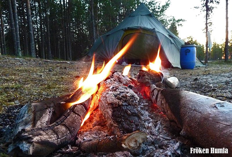 tält,eld,uteliv,barn,fröken humla