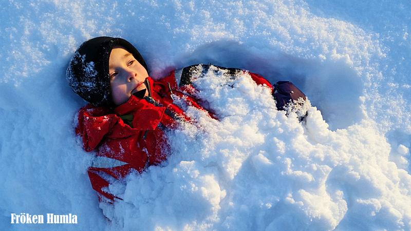 snötäcke,mattisudden,norrbotten,lappland,vinter,fröken humla,jenny holmgren