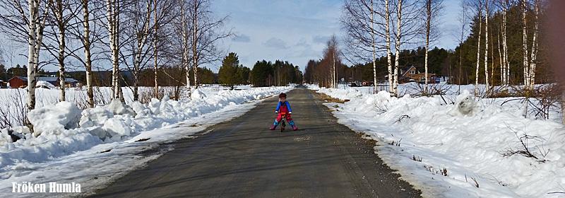 mattisudden,vår,cykla,barn,glesbygd,norrbotten,fröken humla,jenny holmgren