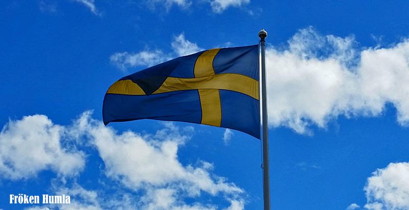Sverige,flagga,nationaldag,fröken humla,norrbotten,glesbygd