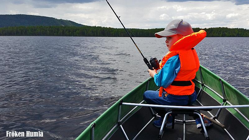 fiska,norrbotten,jenny holmgren,fröken humla