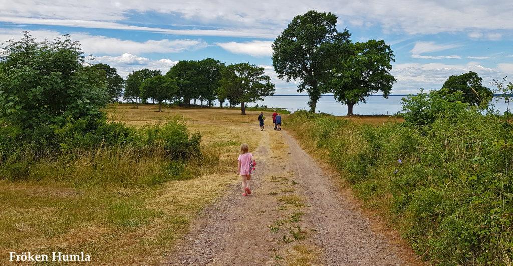 öland,sommar,2018,fröken humla,jenny holmgren